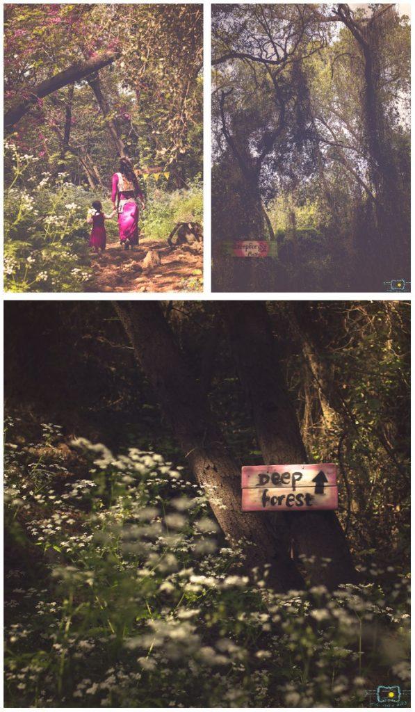 הבלון הצהוב- סטודיו לצילום ועיצוב גרפי 7-597x1024 יער הפיות  או ביקור בפסטיבל הפיות הראשון בישראל
