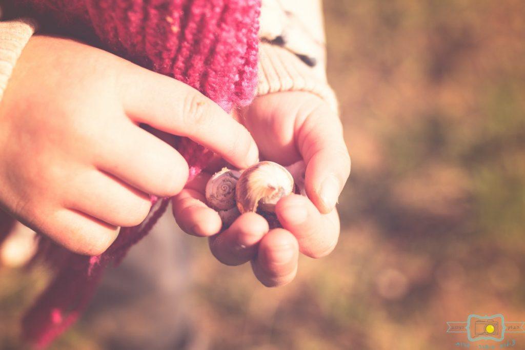 ג'ני פפרמן צלמת הריון, נשיות, בוק בת מצווה ותדמית IMG_0214-Edit-1024x683 שדה של שבלולים- צילום ילדים בטבע, במשחק חופשי. עונות השנה- חורף