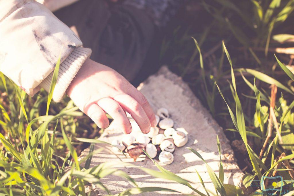 ג'ני פפרמן צלמת הריון, נשיות, בוק בת מצווה ותדמית IMG_0223-Edit-1024x683 שדה של שבלולים- צילום ילדים בטבע, במשחק חופשי. עונות השנה- חורף