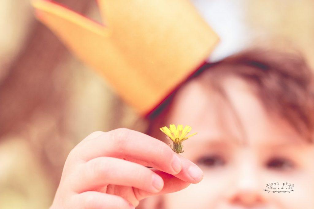 """הבלון הצהוב- סטודיו לצילום ועיצוב גרפי IMG_0606-Edit-1024x683 צילום בעקבות אגדה- """"הנסיך צפרדע"""" צילום ילדים בטבע, צלמת ילדים בדרום"""