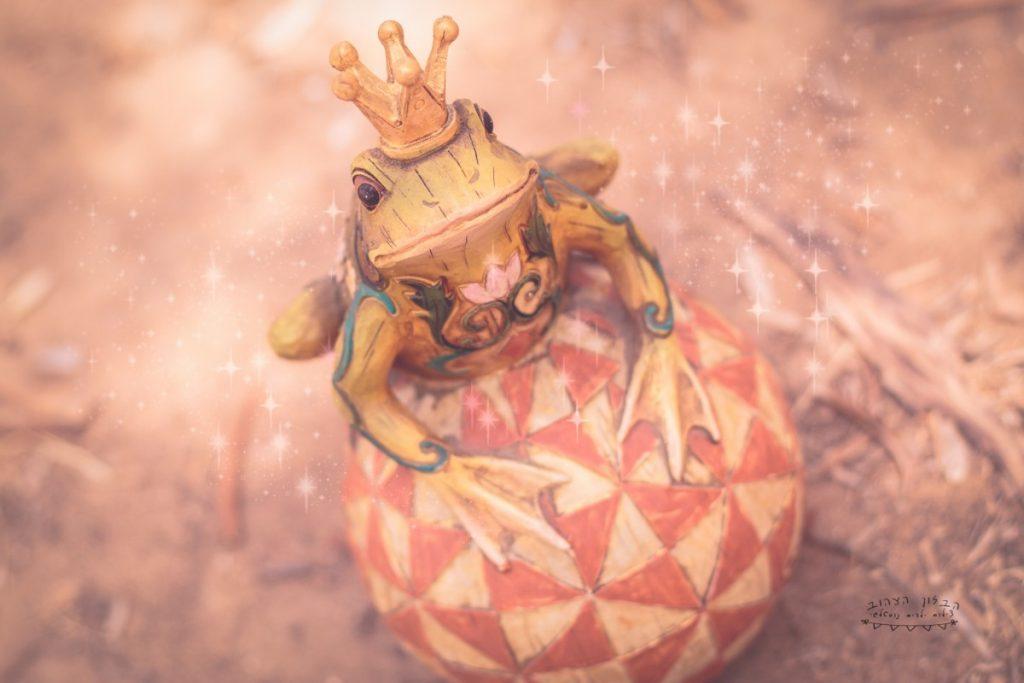 """הבלון הצהוב- סטודיו לצילום ועיצוב גרפי IMG_0627-Edit-Edit-2-1024x683 צילום בעקבות אגדה- """"הנסיך צפרדע"""" צילום ילדים בטבע, צלמת ילדים בדרום"""